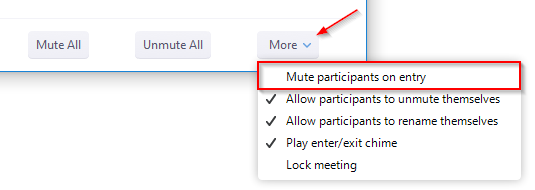 Zoom Mute All Participants on Meeting Entry Option