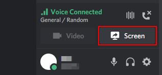 Discord Share Screen Button