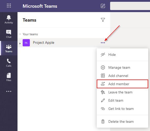 Microsoft Teams Add Member Option