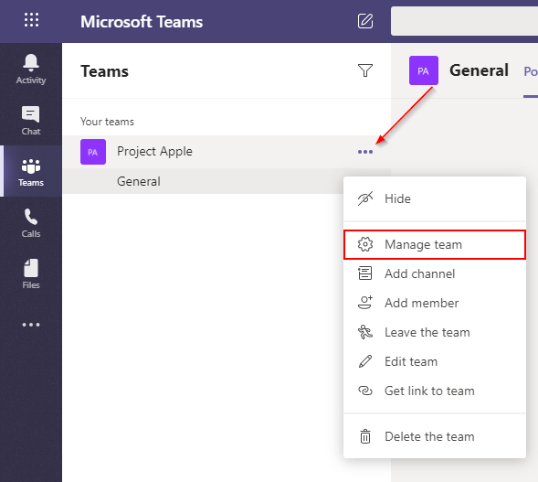 Microsoft Teams Manage Team Option